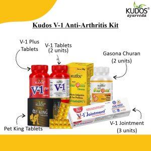 V-1 Kit